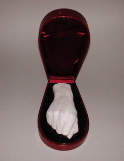 An image of Hand (limb)