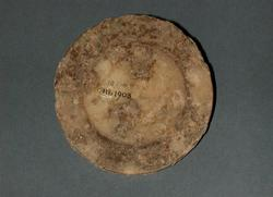 An image of Vessel lid